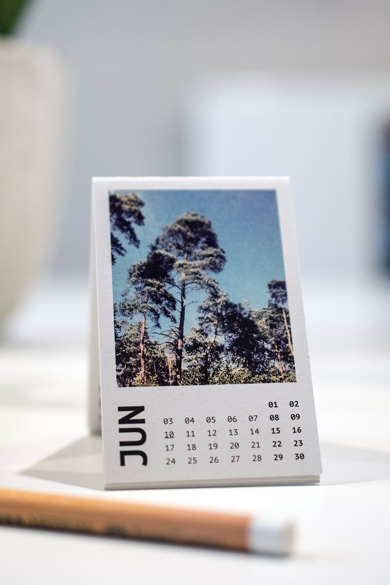 Frey und Meute - Pfalzkalender - 2